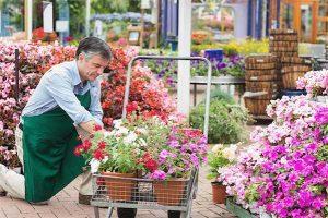 garden-center-worker-400-06802691d-300x200